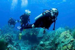 Scuba Diving In Gallipoli Peninsula