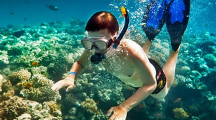 Snorkelling in Gallipoli