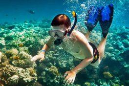 Snorkelling in Gallipoli Peninsula